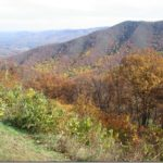 A Sunday Drive on the Blue Ridge Parkway