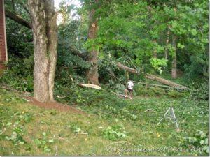 Storm Damage Update