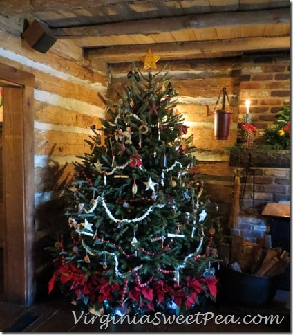Michie Tavern Tree