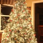 Our 2012 Christmas Tree