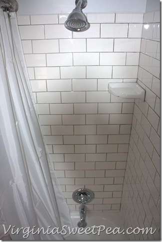 Guest Bath Renovation - Faucet
