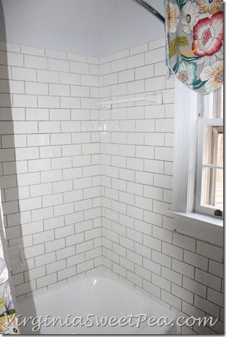 Guest Bath Renovation - Shower