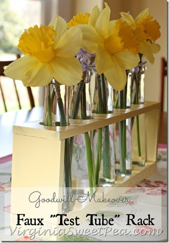 Goodwill Makeover - Faux Test Tube Flower Vase