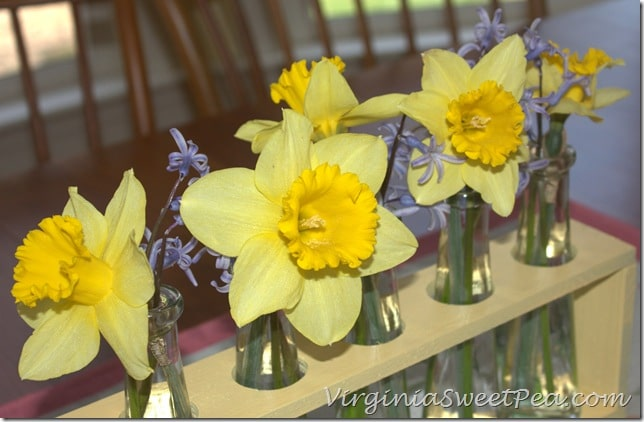 Spring Blooms in Faux Test Tube Holder