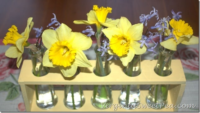 Yellow and Purple Blooms in Faux Test Tube Holder
