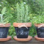 Chalkboard Painted Pots