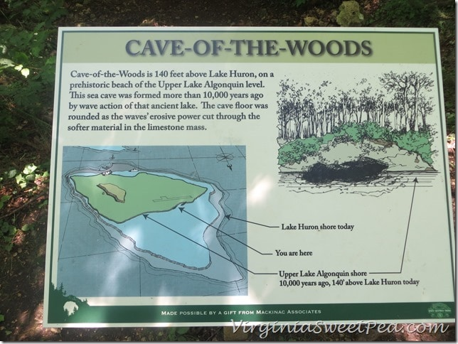 Cave of the woods