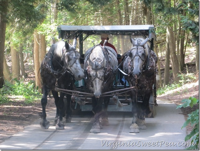 Meeting a Carriage While Walking