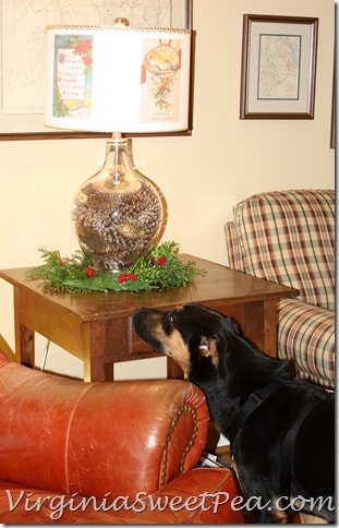 Sherman Inspects Lamp