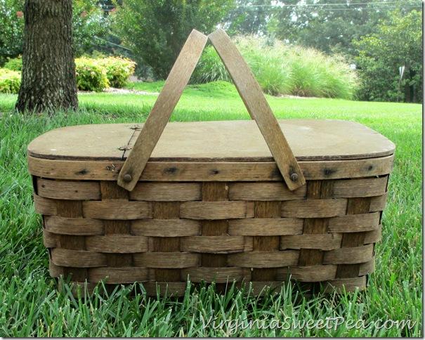 Trash Find Basket Before