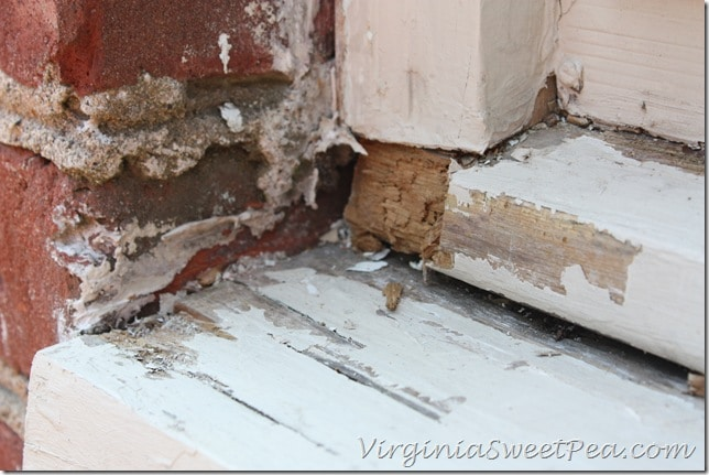 Rotten Wood in Window