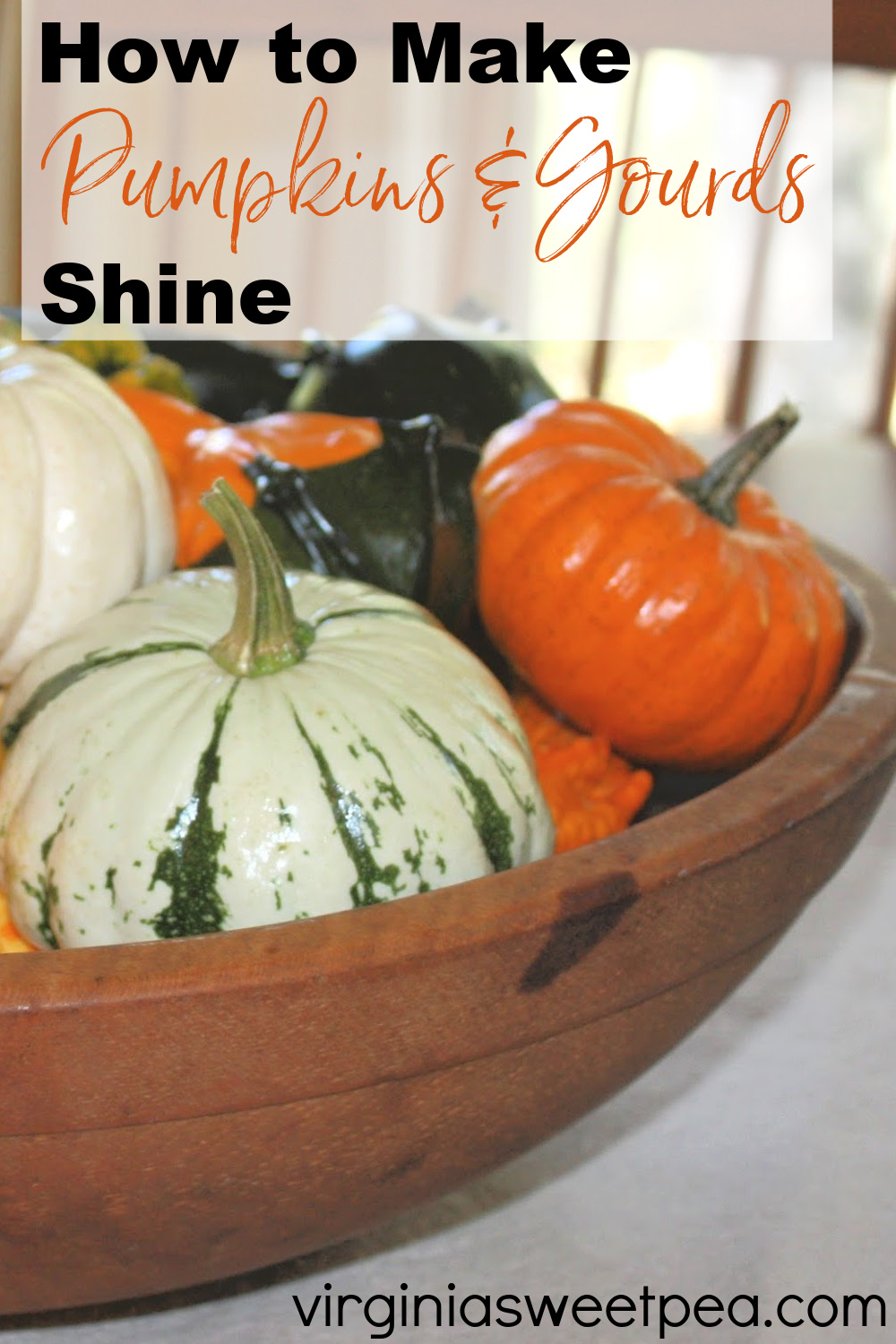 How to Make Pumpkins and Gourds Shine - Learn the simple trick to making pumpkins and gourds shine.  Not only will they shine, they'll last longer as well. via @spaula