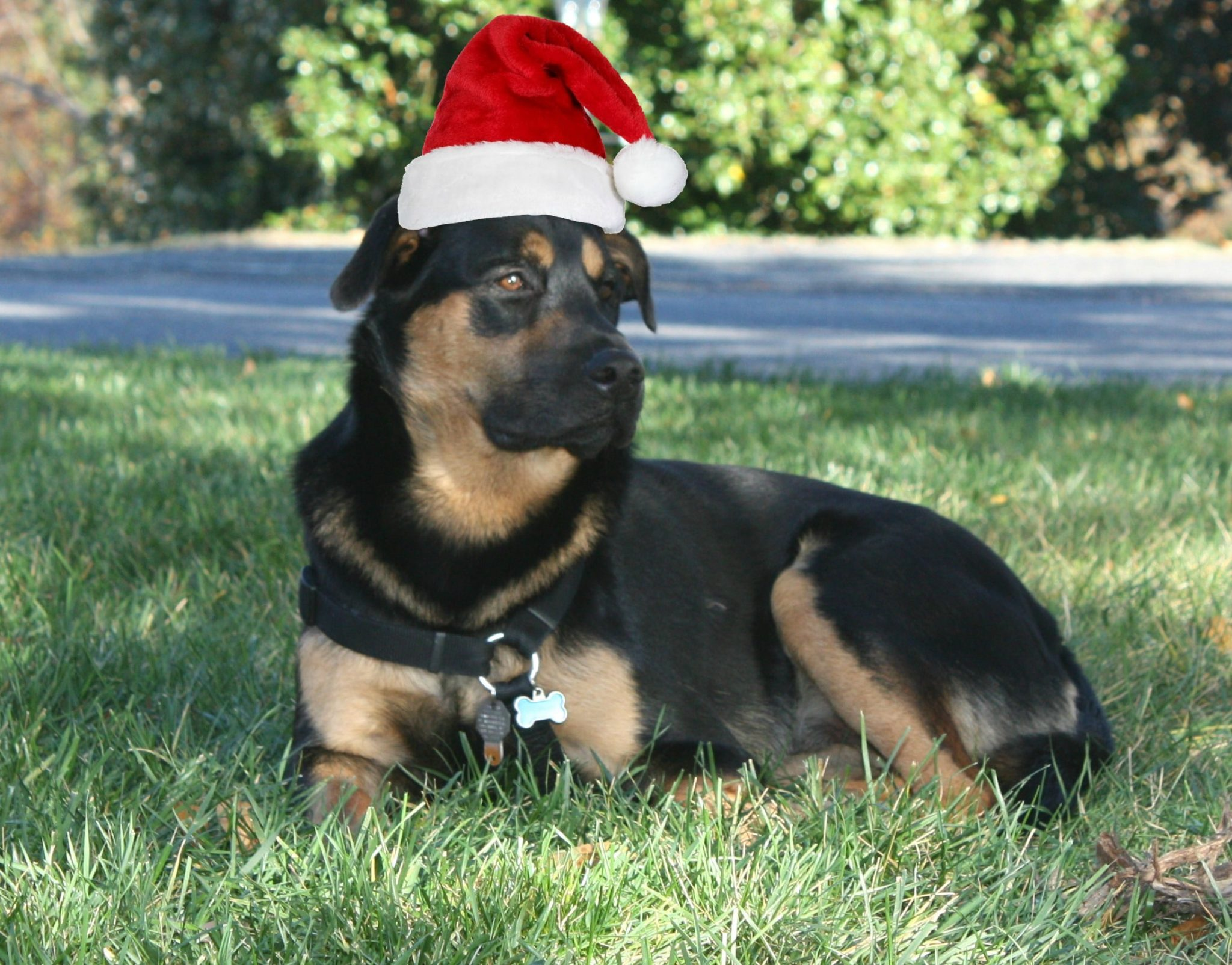 Sherman Skulina says Merry Christmas