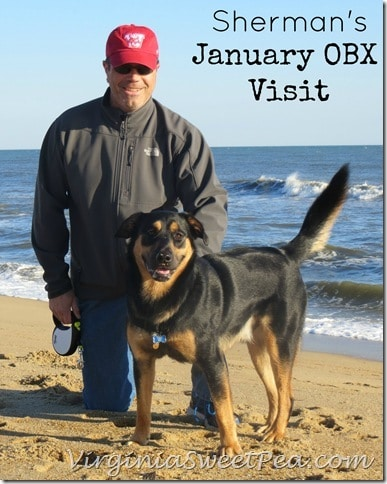 Sherman Skulina at OBX in January by virginiasweetpea.com