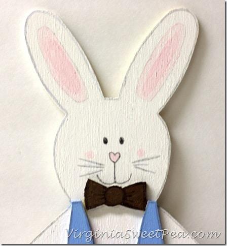 Boy Bunny Face