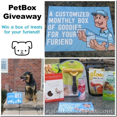 PetBox Giveaway at virginiasweetpea.com