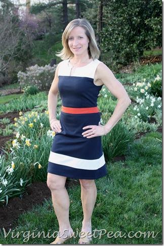 Stitch Fix Color Block Navy Dress
