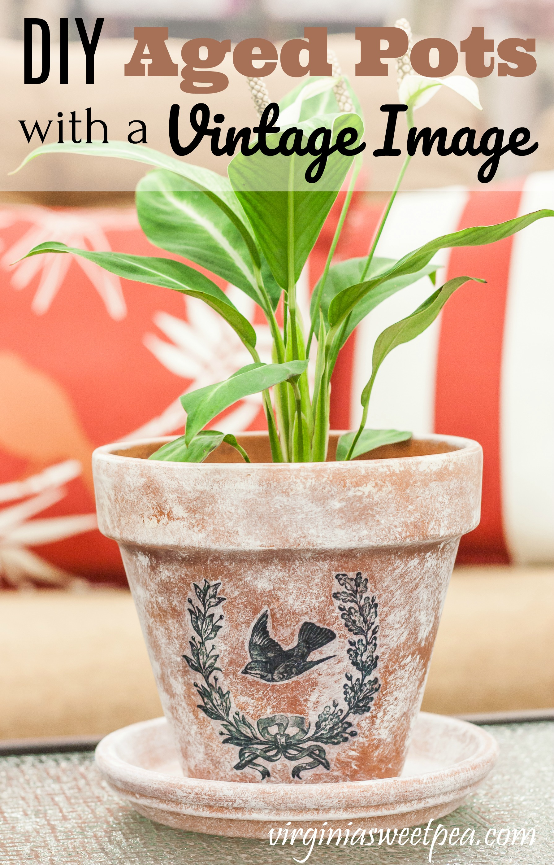 DIY Aged Pots with a Vintage Image - Make a flower pot look aged with this easy paint technique then add a vintage image for a one of a kind look.