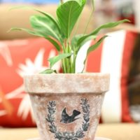 DIY Aged Pots with a Vintage Image