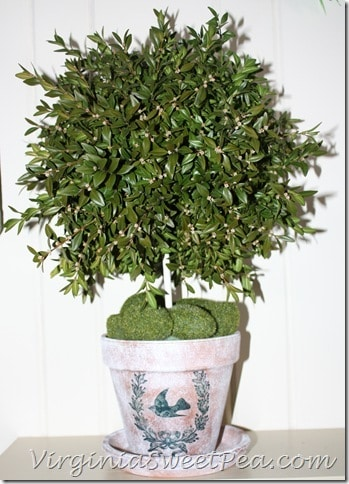 Topiary using DIY Aged Pot