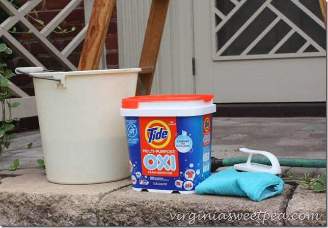 Cleaning the Front Entry with Tide Oxi