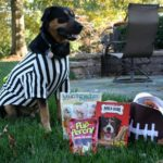Halloween Treats (Not Tricks) for Sherman's Doggie Friends