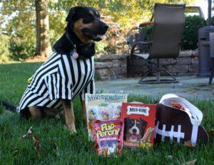 Halloween Treats (Not Tricks) for Sherman's Doggie Friends