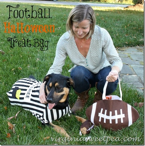 Football Halloween Treat Bag by virginiasweetpea.com