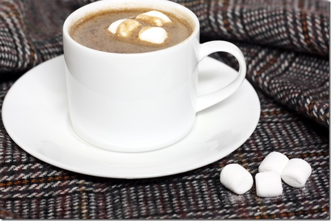 Low Calorie Hot Chocolate2