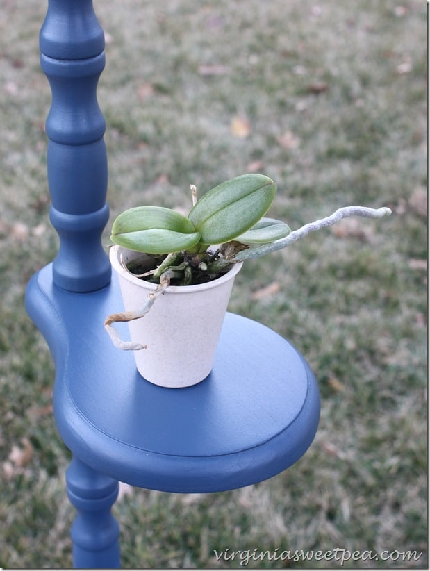 Plant Stand Makeover with Velvet Finishes Paint by virginiasweetpea.com