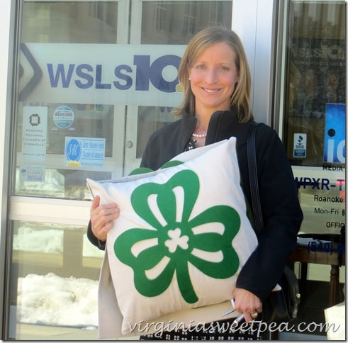 Sharing St. Patrick's Day pillows on BlueRidge Day Time