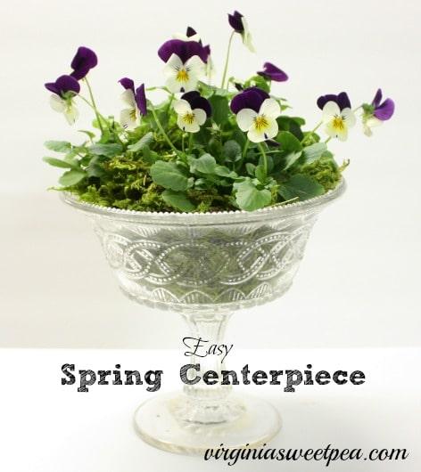 Easy Spring Centerpiece with Violas by virginiasweetpea.com