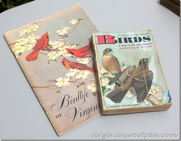 Late 1940's Golden Guide to Birds and a 1951 Birdlife of Virginia guide.  virginiasweetpea.com