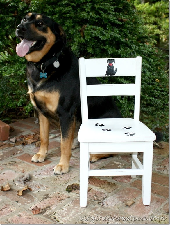 Sherman Skulina gives his doggie approval to this adorable dog themed child's chair. virginiasweetpea.com