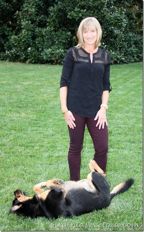 September 2015 Stitch Fix Review - Daniel Raiin Shannon Mesh Detail V-Neck Top and Margaret M Emer Houndstooth Straight Leg Pant