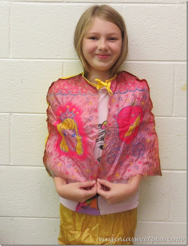 1970's Cindarella Costume