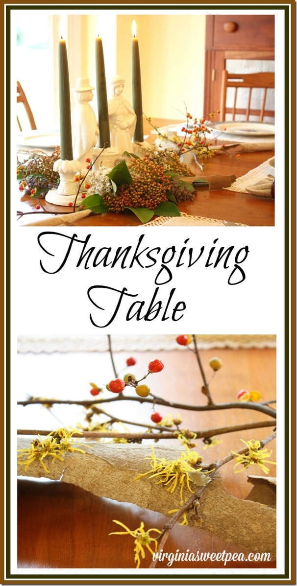 Thanksgiving Table - Make a beautiful centerpiece using natural elements. virginiasweetpea.com