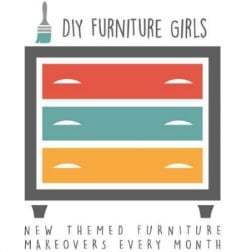 Themed Furniture Makeover - A new theme each month!
