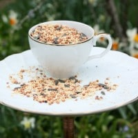 Make a DIY bird feeder using a snack set or cup and saucer.
