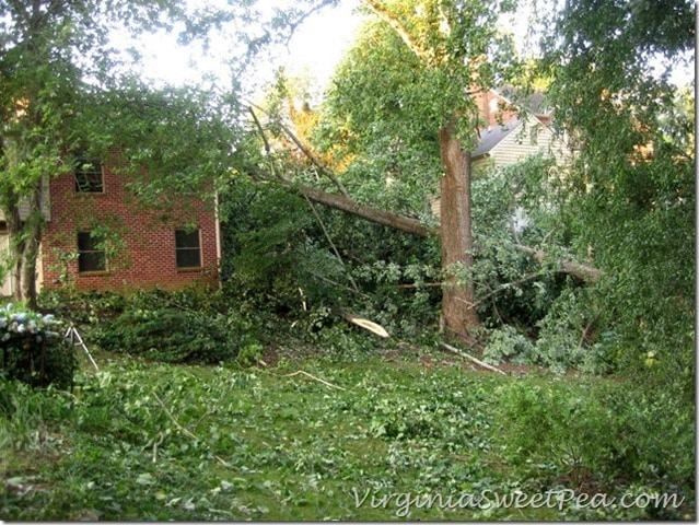 2012 Derecho Damage in Lynchburg, VA