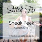 Stitch Fix #38 – Sneak Peek
