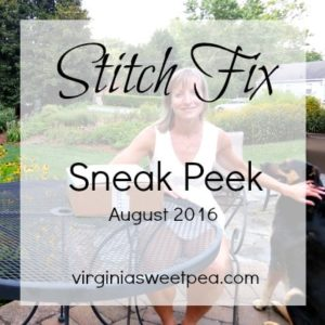 Get a sneak peek at my August 2016 Stitch Fix box.