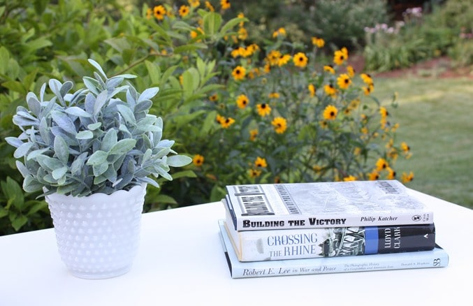 Coffee Table Vignette with Civil War Books