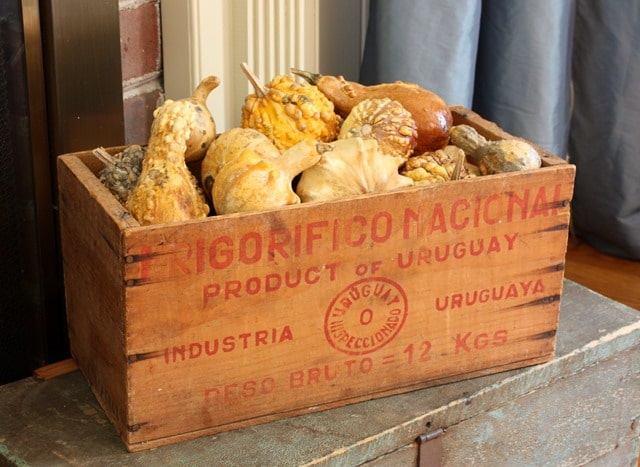 Dried Gourds in an Vintage Wooden Box I Fall Mantel and Living Room Decor - Get ideas for decorating your mantel and living room for fall. #fall #falldecor #fallvignette #falldecorating #vintage