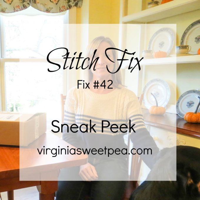 December 2016 Stitch Fix Sneak Peek - Fix #42 - virginiasweetpea.com