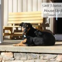 Smith Mountain Lake House Update–January 2017
