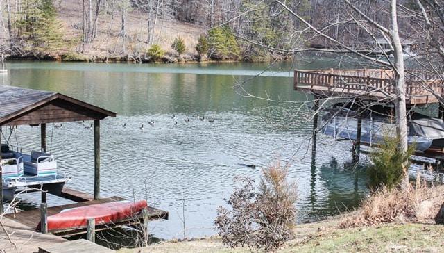 Sherman Skulina swimming at Smith Mountain Lake, VA