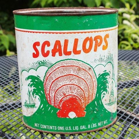 Vintage Scallops Can - virginiasweetpea.com