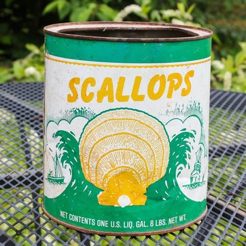 Vintage Scallops Can - virginiasweetpea.com