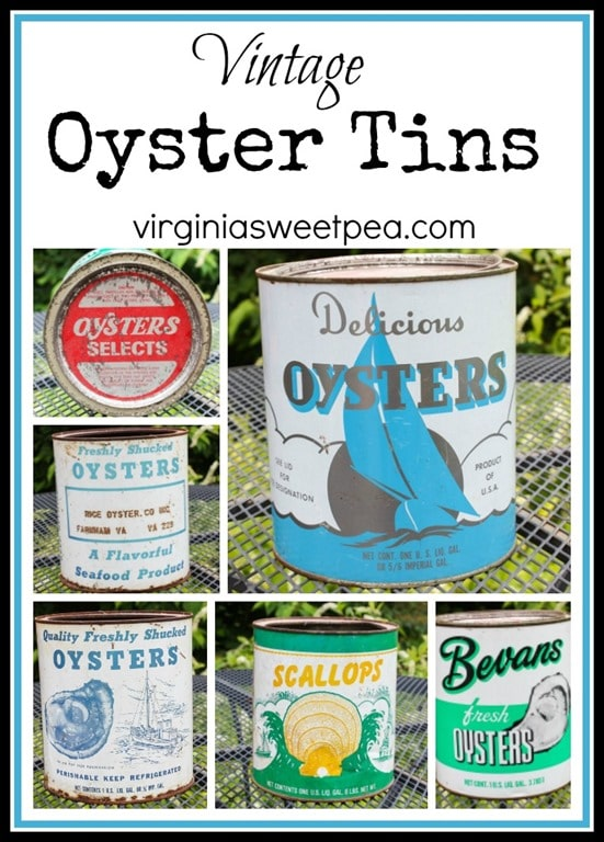 See a vintage collection of oyster and scallop cans. virginiasweetpea.com